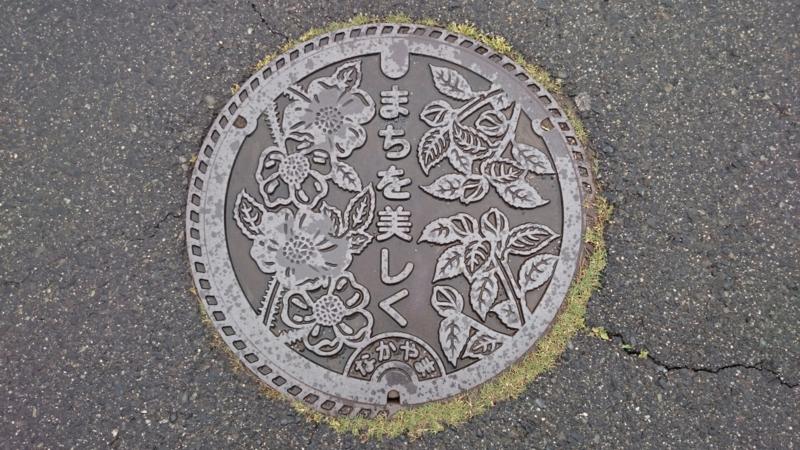 鳥取県西伯郡大山町のマンホール(ハマナス、サザンカ)