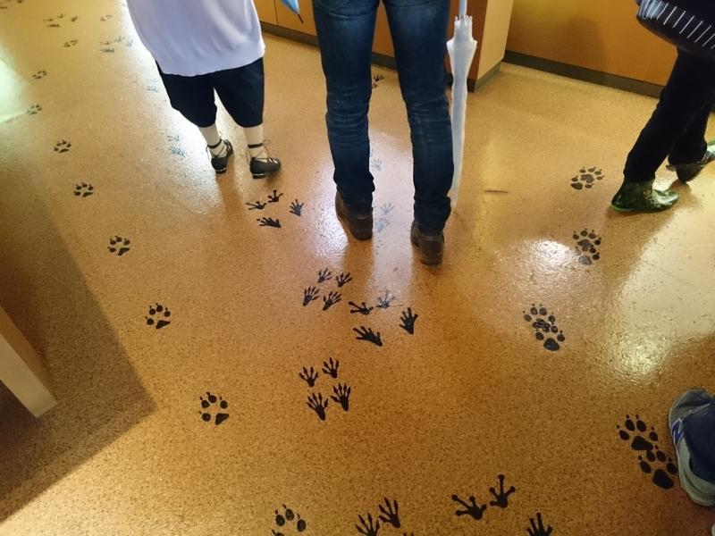 動物の教室