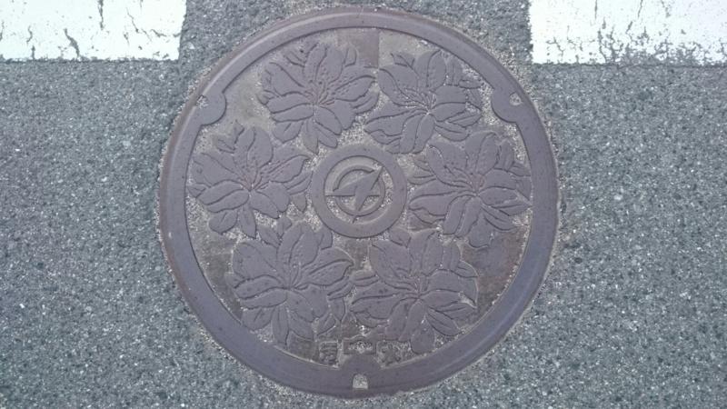 広島県山県郡北広島町のマンホール(サツキ)