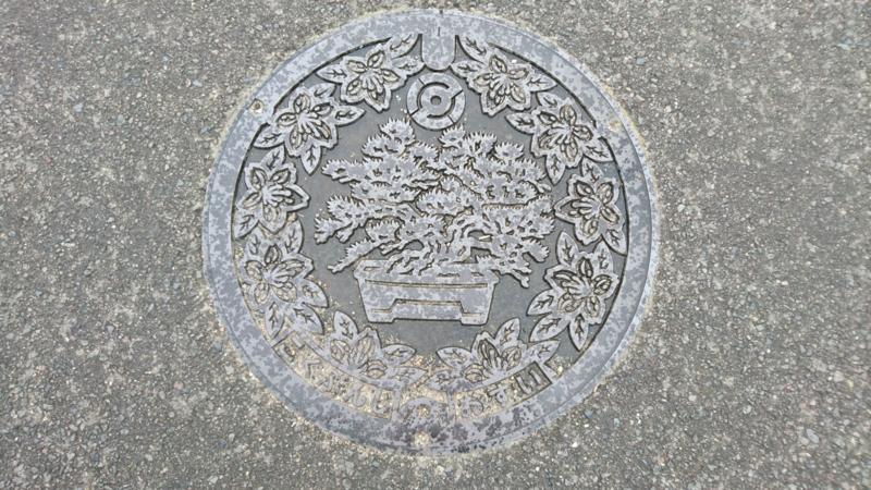 香川県高松市のマンホール(旧国分寺町、マツの盆栽、サツキ)