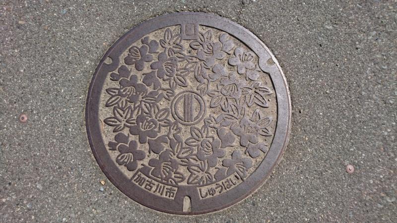 兵庫県加古川市のマンホール(ツツジ)