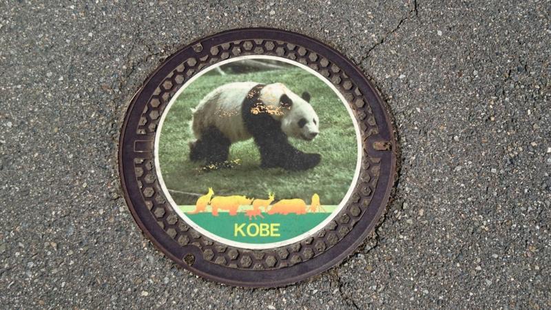 兵庫県神戸市のマンホール(王子動物園パンダ)