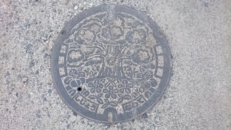 大阪府四条畷市のマンホール(クスノキ、サツキ)