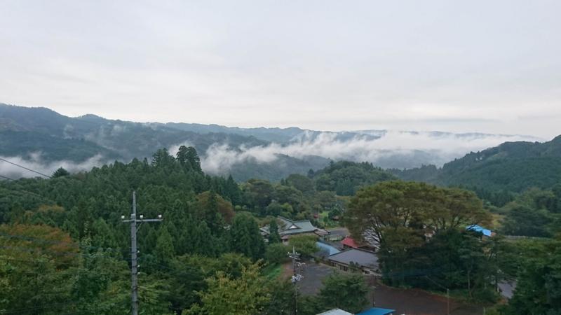 竜のような形の霧