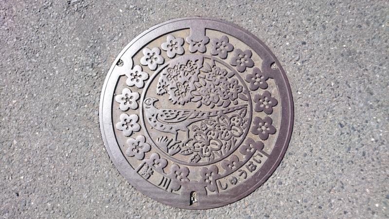 茨城県常陸大宮市のマンホール(桜、ツツジ、山鳥)