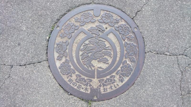 富山県富山市のマンホール(松、椿)
