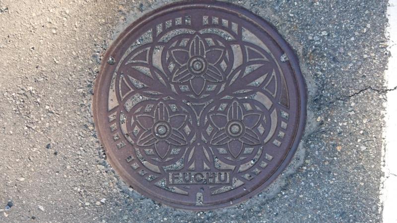 富山県富山市のマンホール(スイセン)