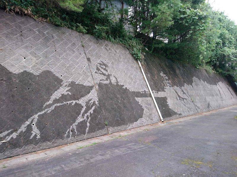 剥ぎ取られた壁