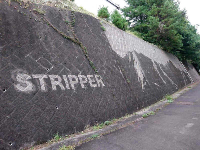 「STRIPPER」/西岳 拡貴