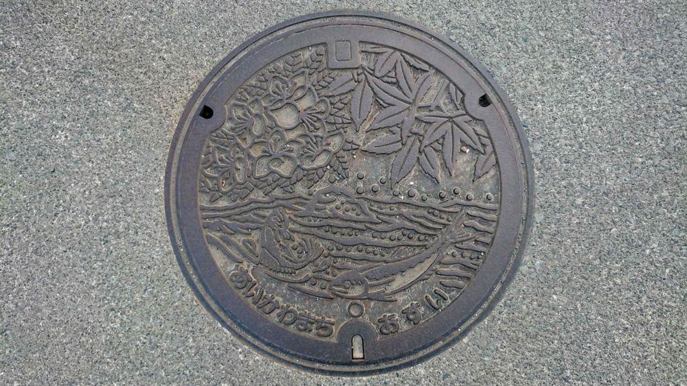 神奈川県愛甲郡愛川町のマンホール(つつじ、かえで、中津川の清流、若鮎)