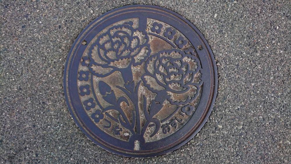 兵庫県淡路市のマンホール(旧津名町、カーネーション)