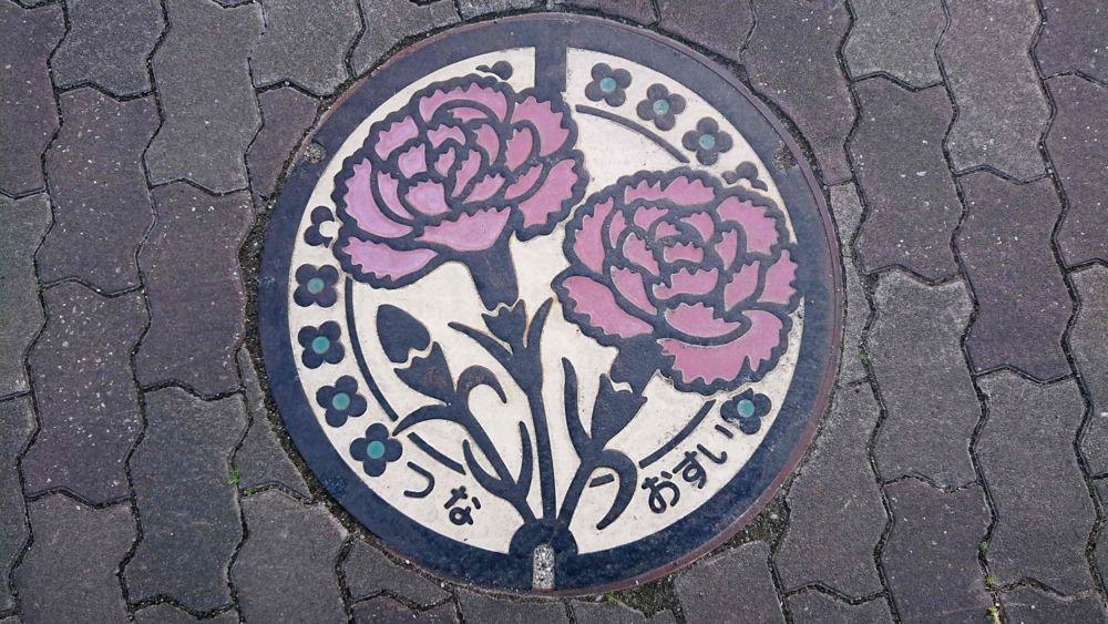 兵庫県淡路市のマンホール(旧津名町、カーネーション)[カラー]