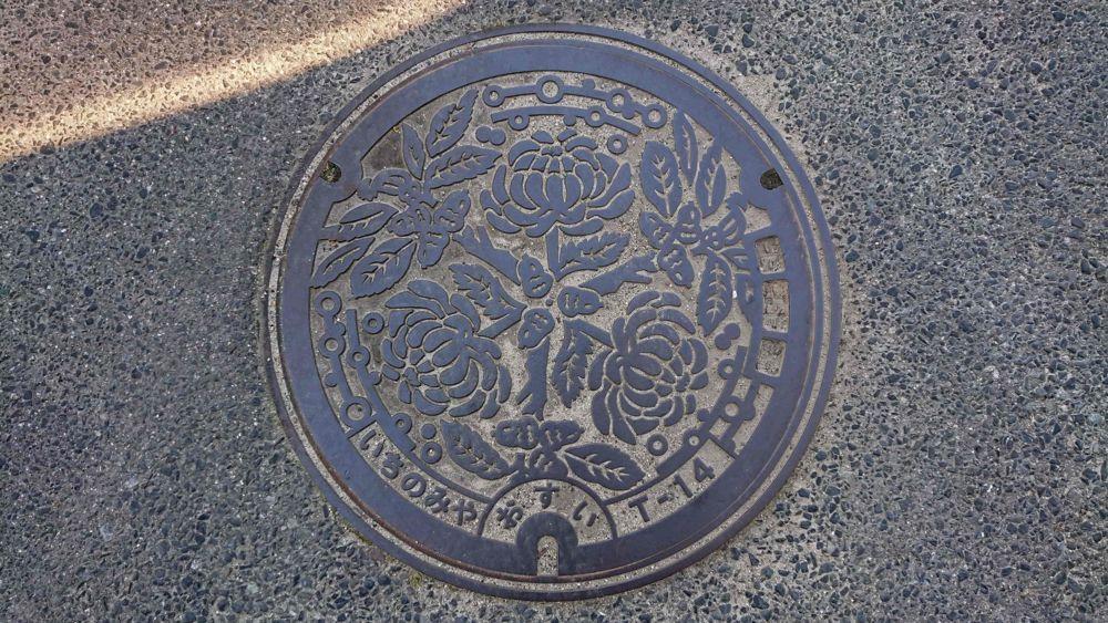 兵庫県淡路市のマンホール(旧一宮町、ウバメガシ、キク)