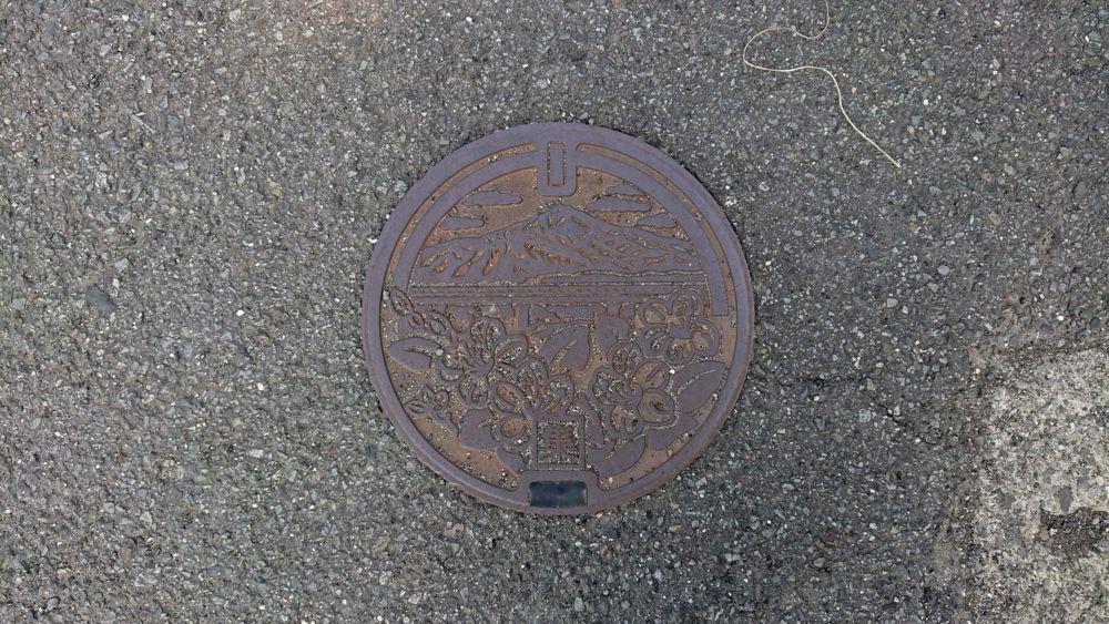 徳島県吉野川市のハンドホール(旧山川町、高越山、オンツツジ)