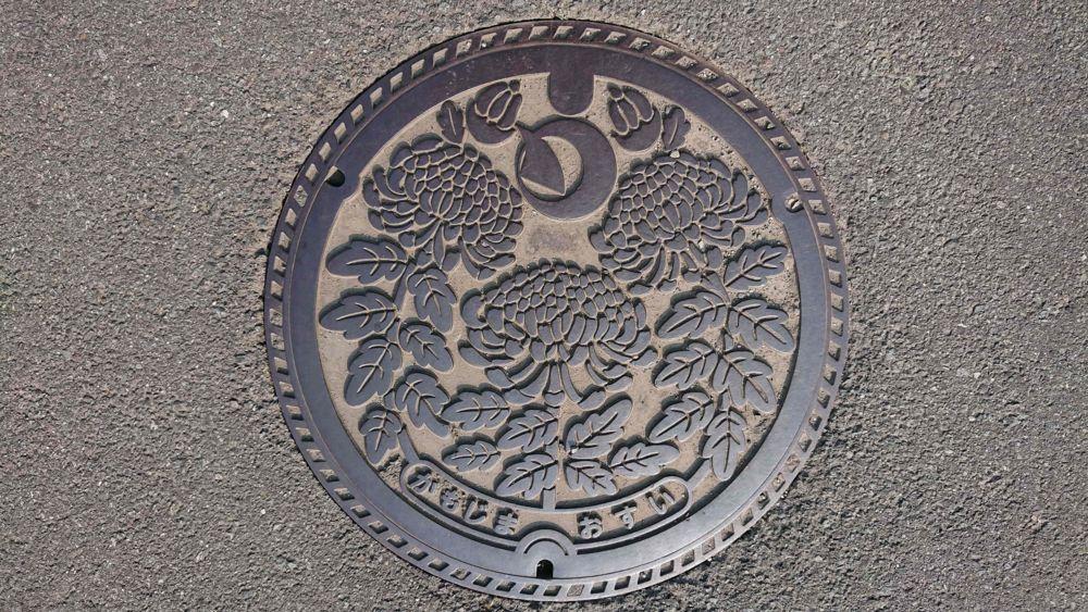 徳島県吉野川市のマンホール(旧鴨島町、キク)