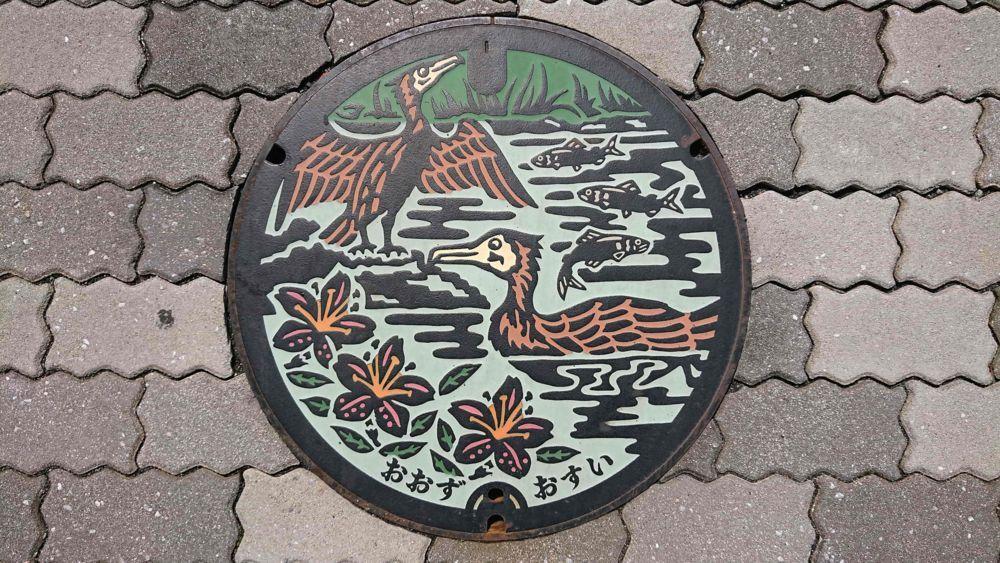 愛媛県大洲市のマンホール(大洲のうかい、ツツジ)[カラー]