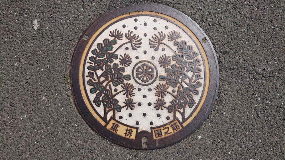 愛媛県西予市のマンホール(旧宇和町、レンゲソウ)[カラー]