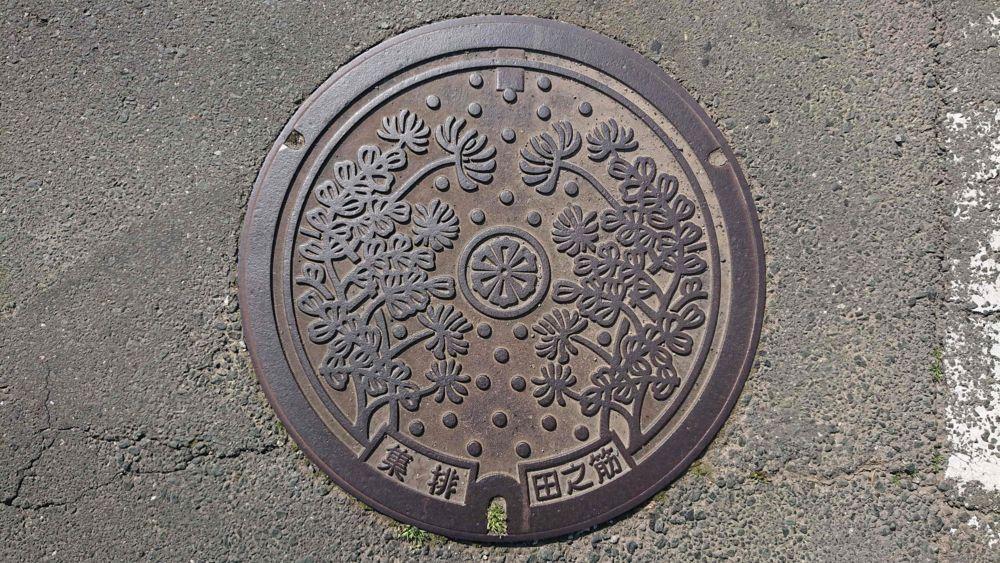 愛媛県西予市のマンホール(旧宇和町、レンゲソウ)