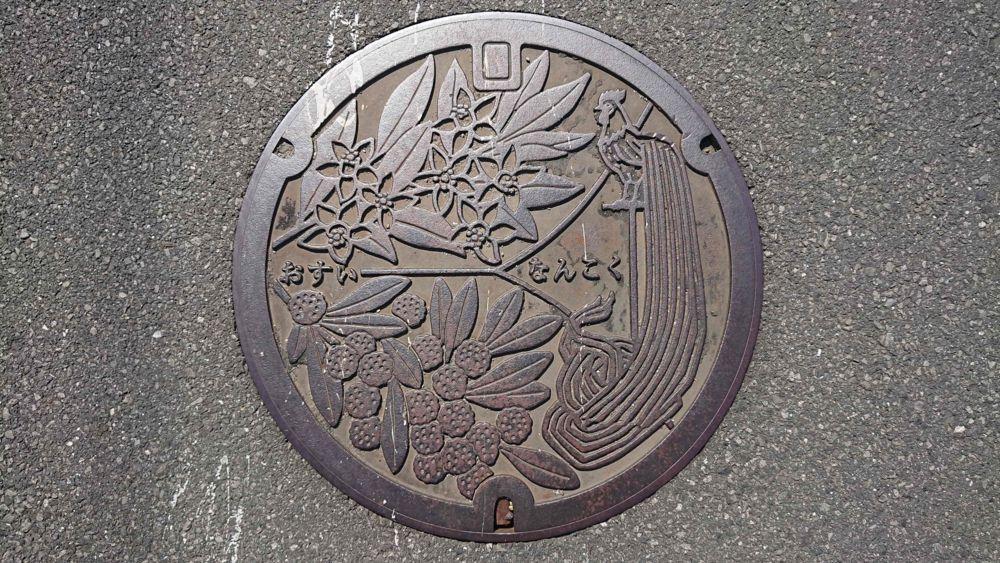 高知県南国市のマンホール(尾長鳥、たちばな、やまもも)