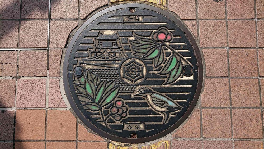 高知県高知市のマンホール(ヤイロチョウ、ヤマモモ、高知城)[カラー]