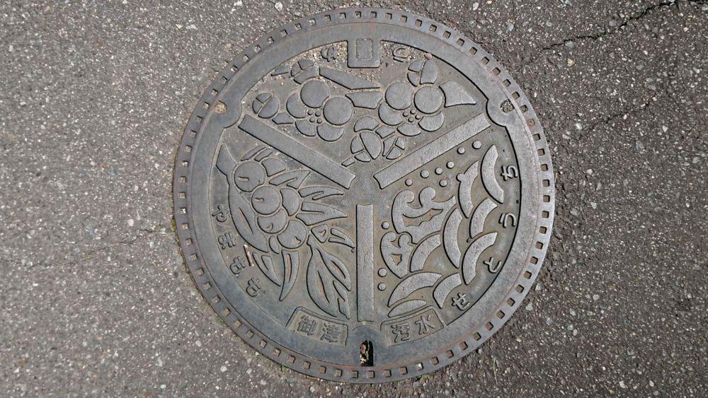 兵庫県たつの市のマンホール(旧御津町、ウメ、ヤマモモ、瀬戸内海の波)