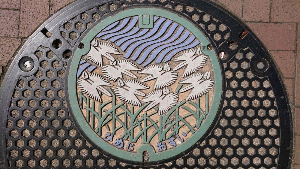 兵庫県姫路市のマンホール(サギソウ)[カラー緑水色白]