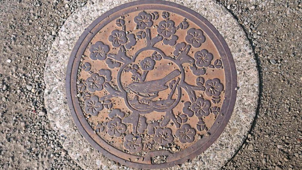東京都青梅市のマンホール(ウグイス、ウメ)