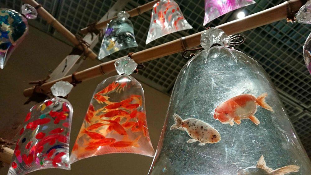 様々な種類の金魚たち