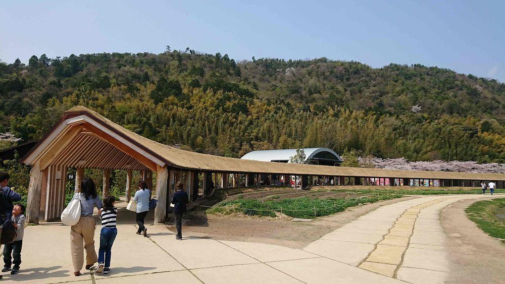 ラコリーナの草回廊
