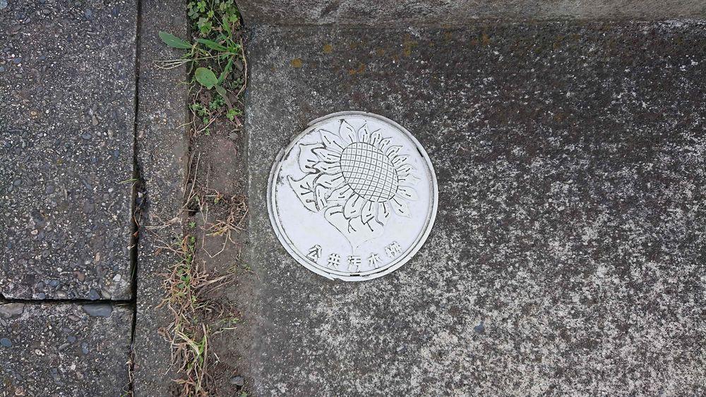 茨城県那珂市の公共汚水桝(ひまわり)