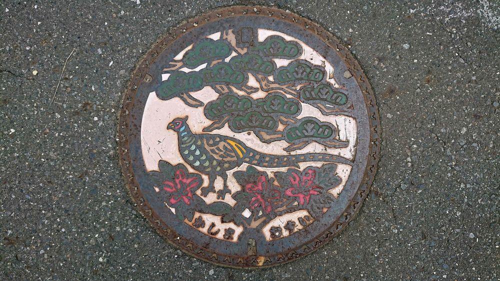 茨城県鹿嶋市のマンホール(キジ、マツ、ヤマツツジ)[カラー]