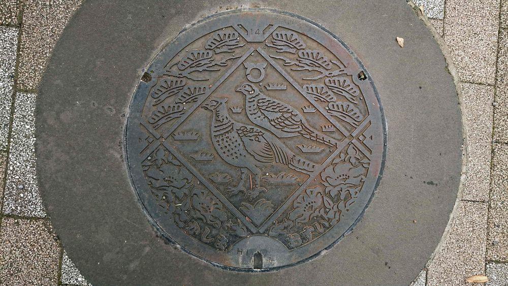 茨城県鹿嶋市のマンホール(キジ、ハマナス、マツ)