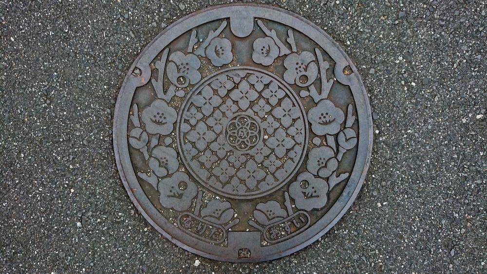 千葉県成田市のマンホール(アジサイ、ウメ)