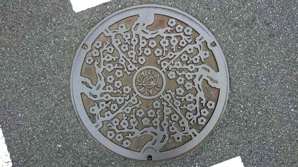 千葉県印旛郡酒々井町のマンホール(梅の木)