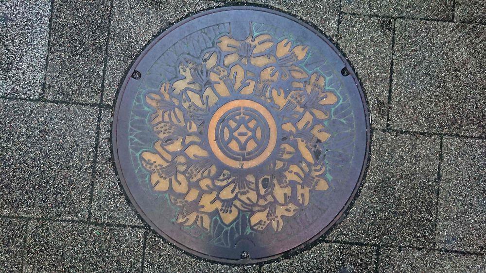 静岡県静岡市のマンホール(旧清水市、キリシマツツジ)[カラー]