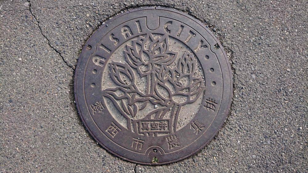 愛知県愛西市のマンホール(アカハス)