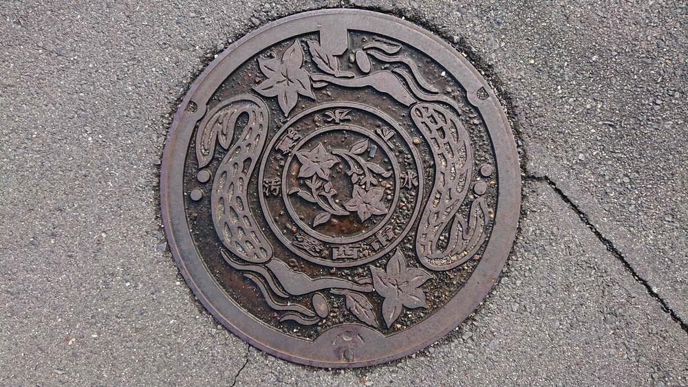 愛知県愛西市のマンホール(人魚、キキョウ)