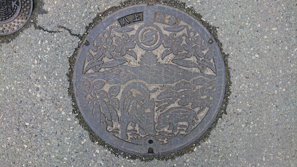 兵庫県篠山市のマンホール(マツ、高城山、八上城、黒豆、イノシシの親子)
