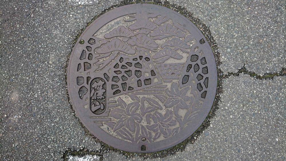兵庫県篠山市のマンホール(旧篠山町、篠山城址の石垣・マツ、ササユリ)