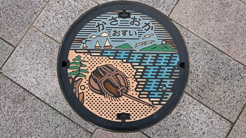 岡山県笠岡市のマンホール(カブトガニ)[カラー]