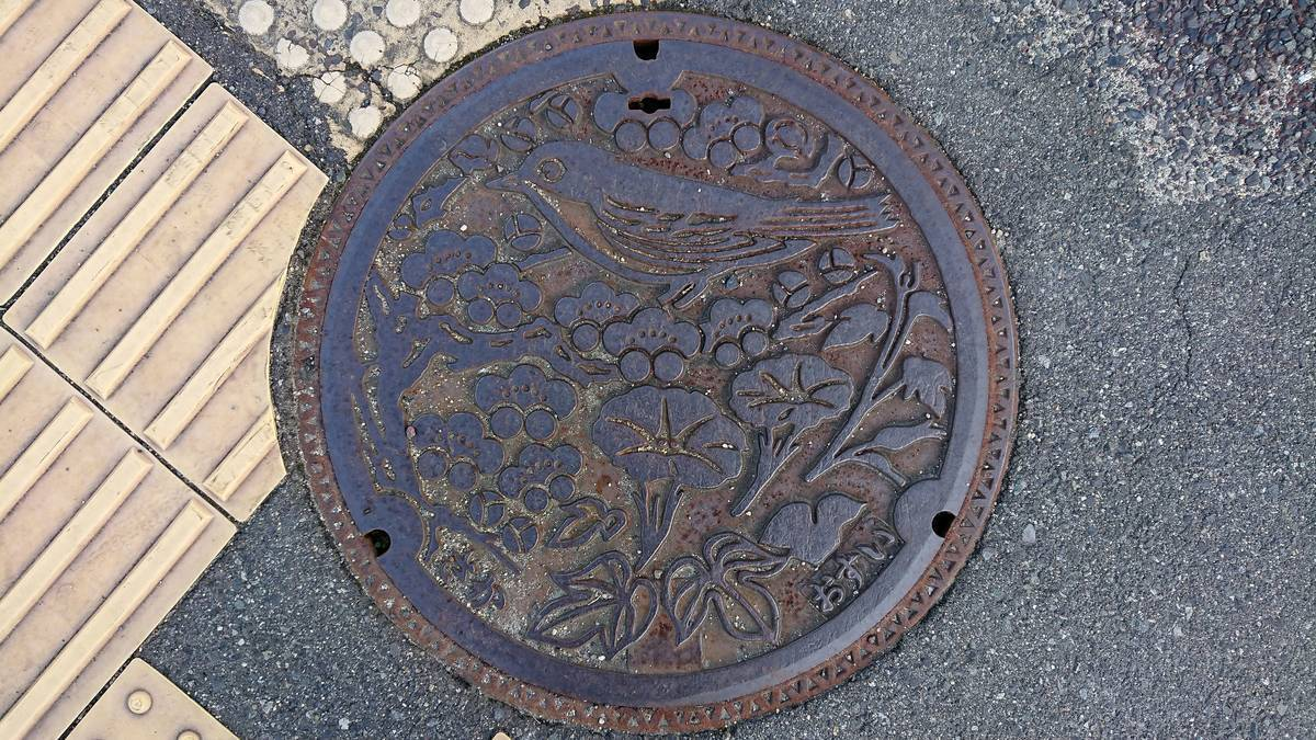 広島県安芸郡坂町のマンホール(あさがお、梅、メジロ)