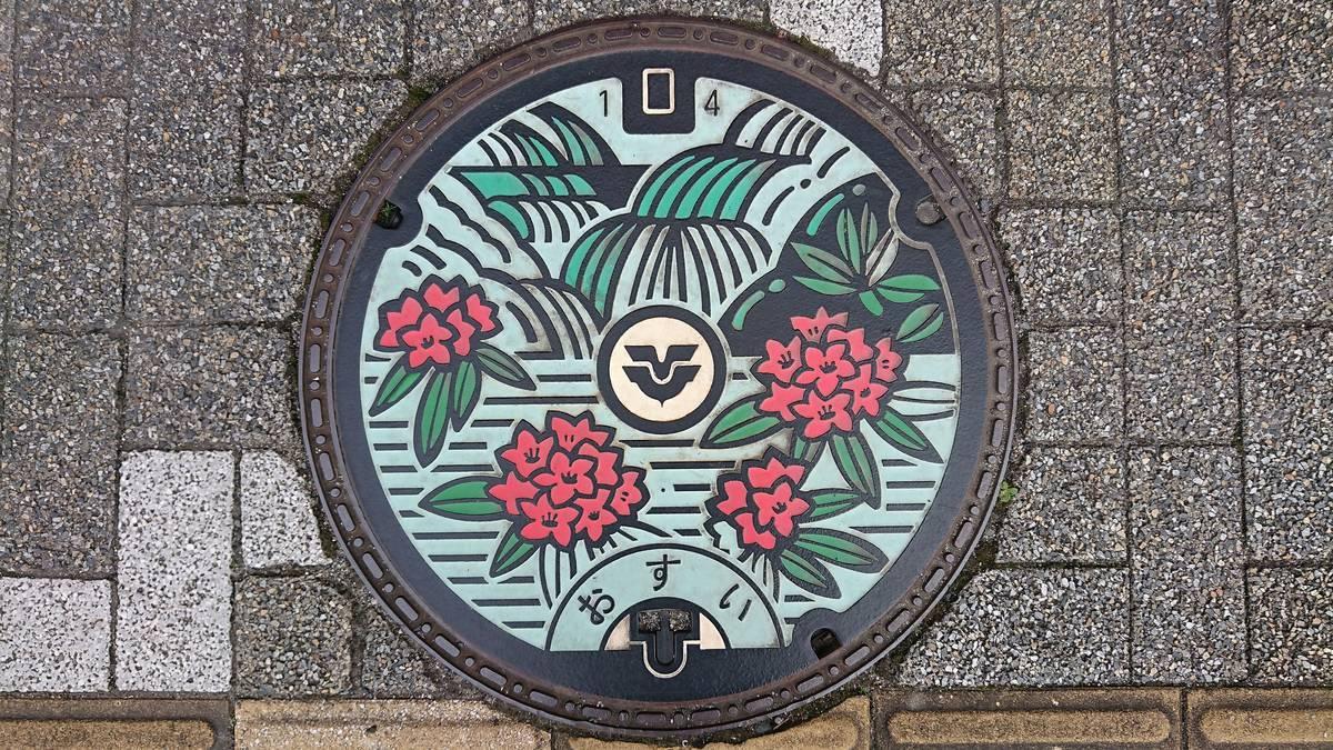 広島県東広島市のマンホール(わにぶちの滝、シャクナゲ)[カラー]
