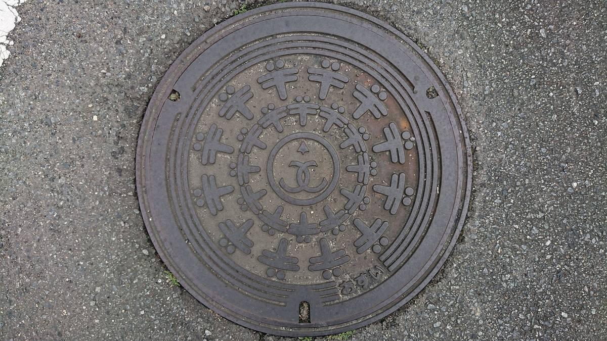 兵庫県たつの市のマンホール(旧龍野市、赤とんぼ)