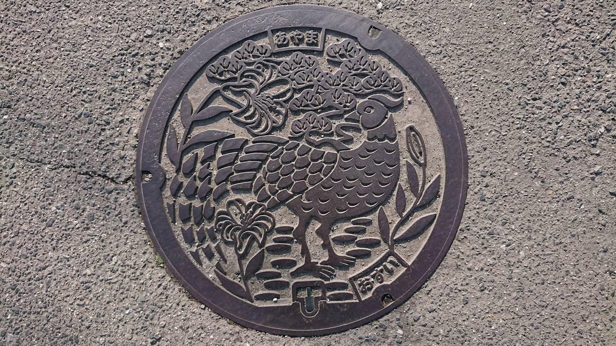 三重県伊賀市のマンホール(旧阿山町、ヤマユリ、アカマツ、キジ)