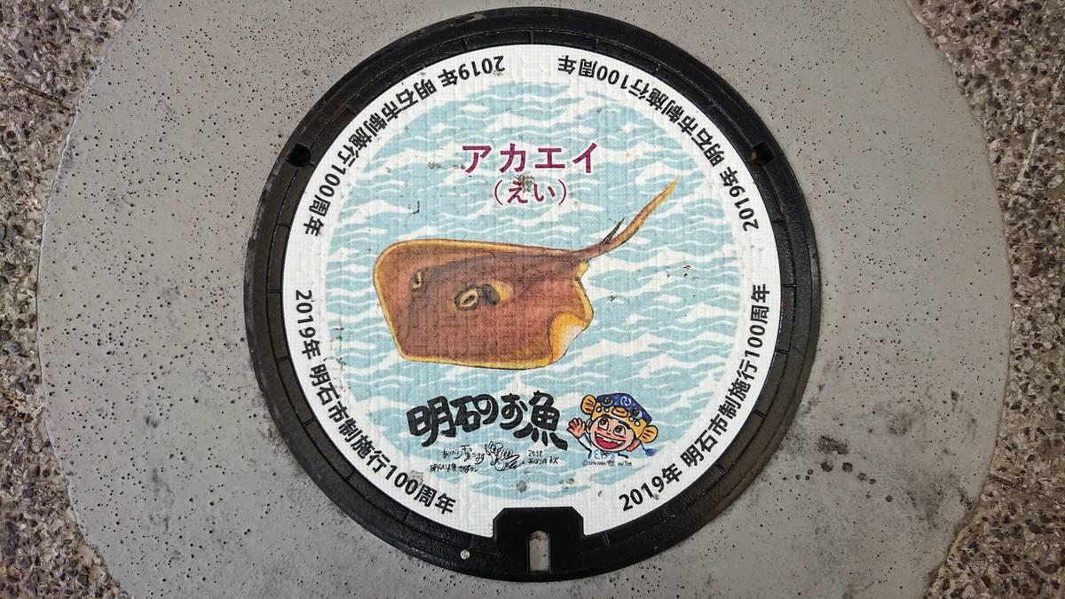 兵庫県明石市のマンホール(市制施行100周年記念、アカエイ、さかなクン)[カラーシール]