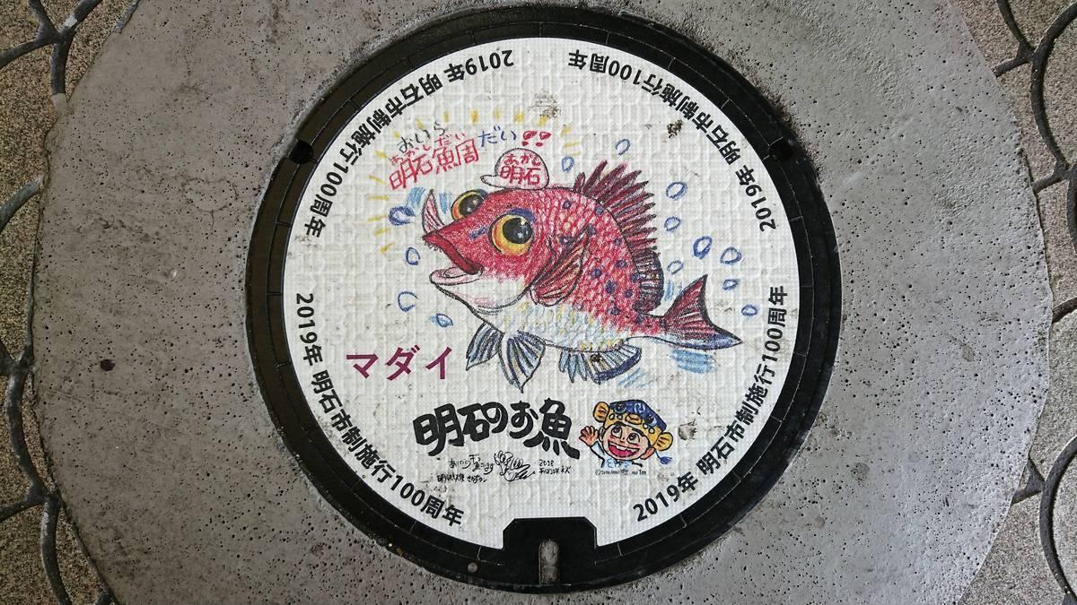 兵庫県明石市のマンホール(市制施行100周年記念、マダイ、さかなクン)[カラーシール]