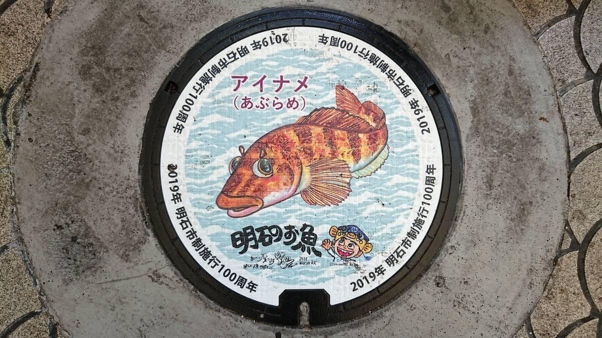 兵庫県明石市のマンホール(市制施行100周年記念、アイナメ、さかなクン)[カラーシール]