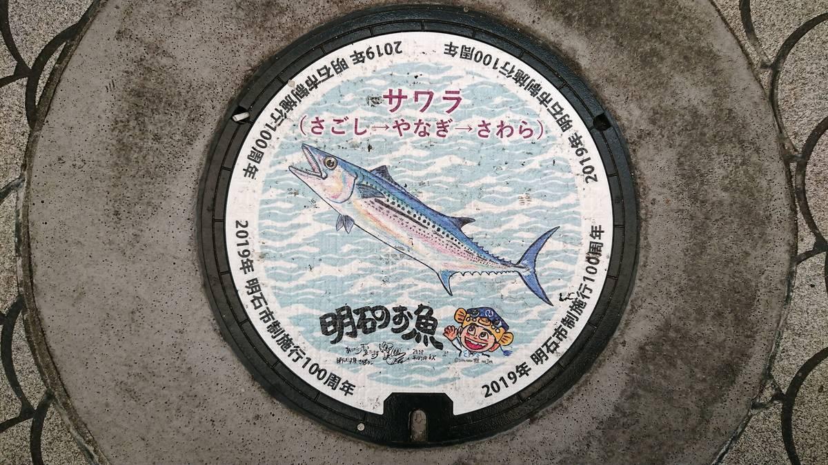 兵庫県明石市のマンホール(市制施行100周年記念、サワラ、さかなクン)[カラーシール]