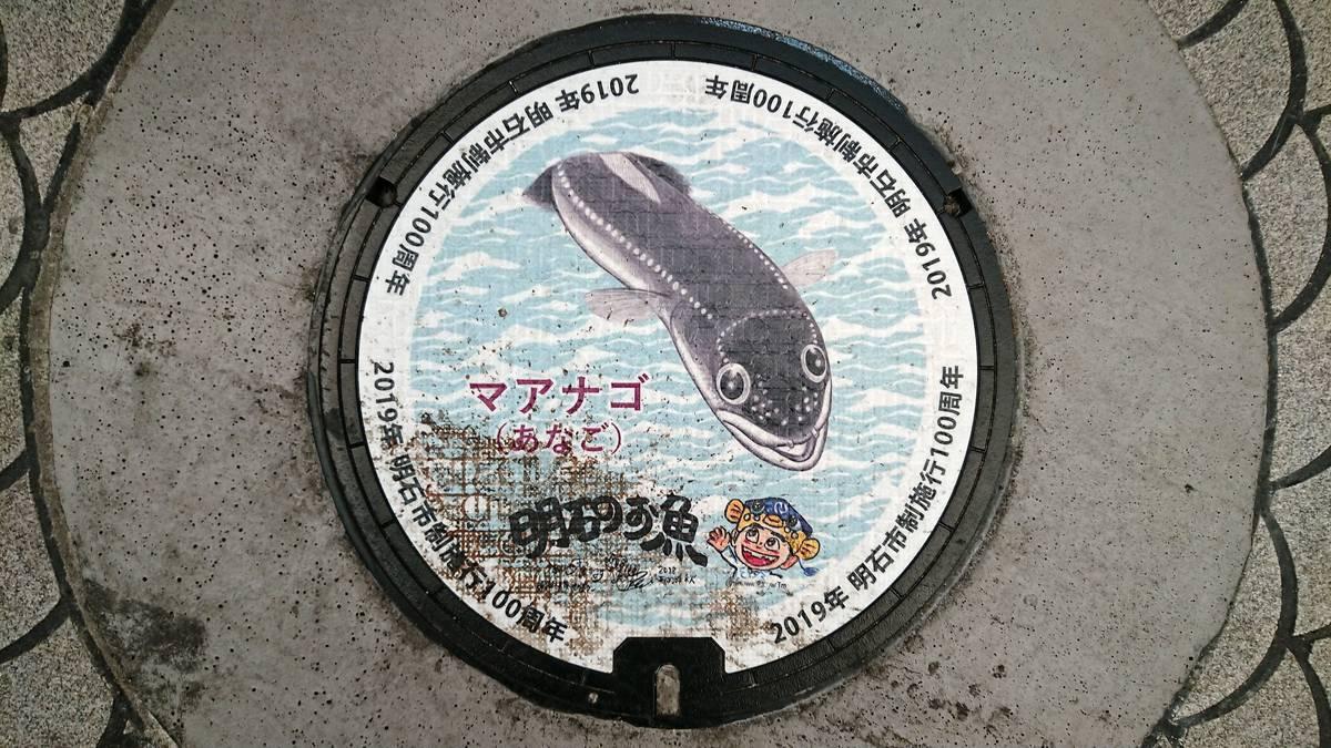 兵庫県明石市のマンホール(市制施行100周年記念、マアナゴ、さかなクン)[カラーシール]