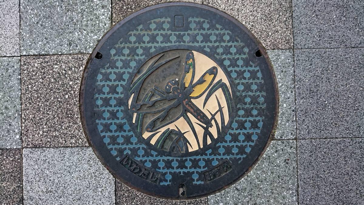 静岡県磐田市のマンホール(ベッコウトンボ)[カラー]